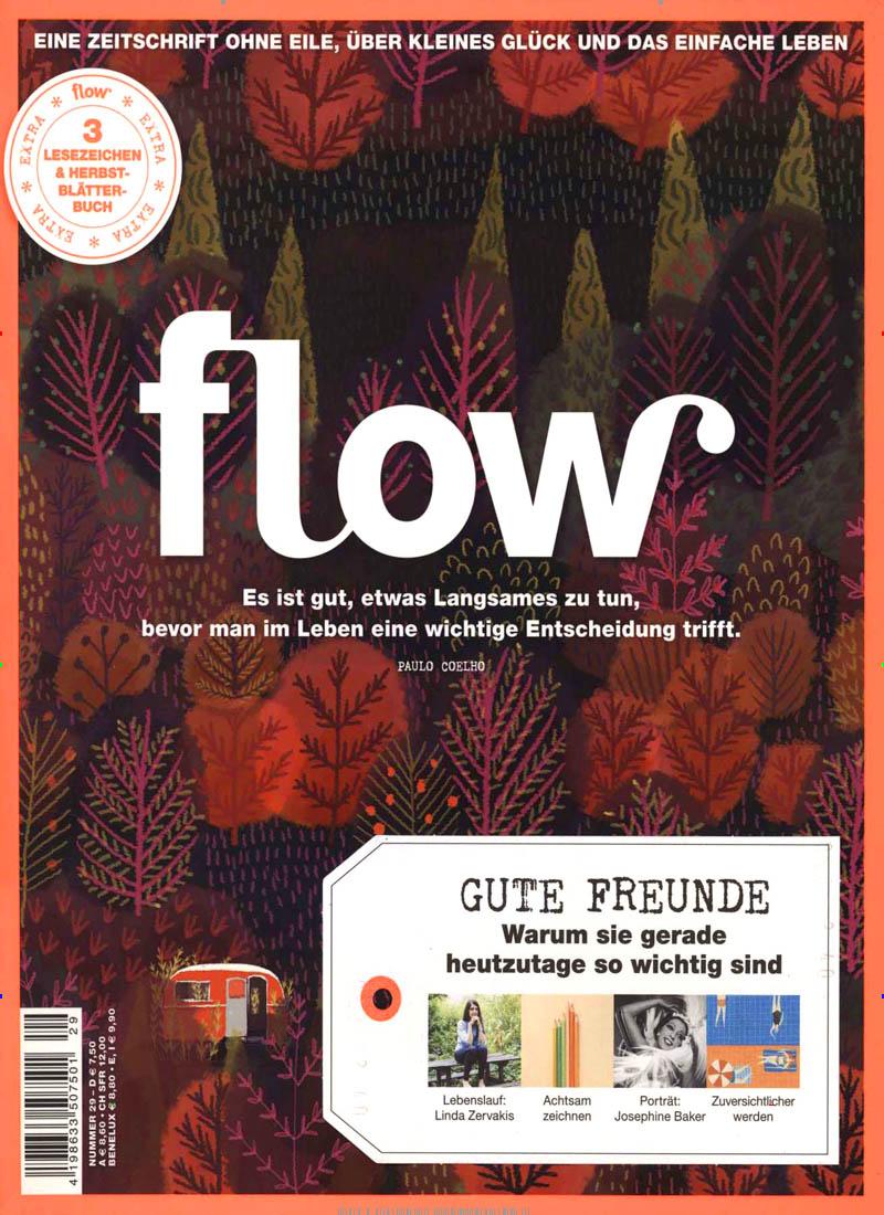 flow abo flow probe abo flow geschenkabo bei presseshop