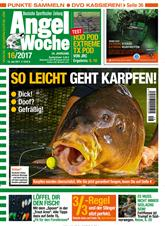Angelwoche Cover
