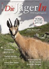 Die Jägerin Cover